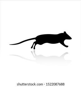 Rat icon vector design. Rat silhouette