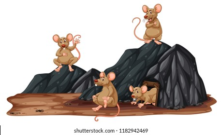 Rats in a group in a cave