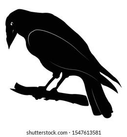 Raven, black and white vector silhouette