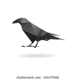 Raven isolated on a white backgrounds