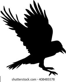 A raven lands as a silhouette, vector