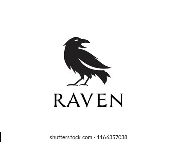 raven logo icon designs