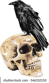 Raven on Human Skull  - Illustration of the black raven bird  sitting on skull . High Detailed Vector Art.