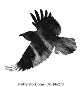 Raven on white background, vector illustration
