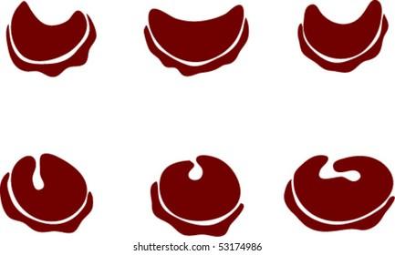 ravioli and  perogies icons