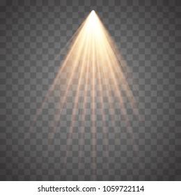 Rays of light isolated on transparent background. Golden spotlight. Sun flash. Vector illustration