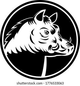 Razorback Wild Hog Feral Pig Head Woodcut Black and White Circle