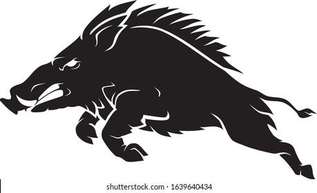 Razorback Wild Hog, Side View Leaping