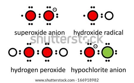 Reactive Oxygen Species Ros Superoxide Anion Stock Vector Royalty