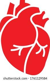 Real human heart organ icon