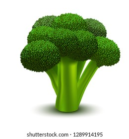 Realistic 3d Detailed Green Fresh Broccoli Raw Healthy Plant, Element Cooking. Vector illustration of Organic Natural Vegetable