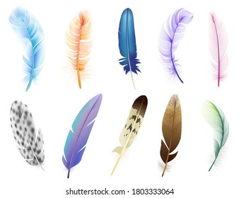 Realistic 3d feathers. Birds colored falling fluffy feathers, floating bird soft plumage feathers isolated vector icons set. Fluffy and plumage, feather falling illustration