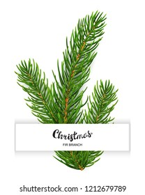 Realistic 3d fir branches composition isolated on white background. Vector illustration of christmas tree branch or spruce twigs top view