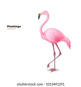 Realistic 3d flamingo. Pink vector tropical exotic bird standing. Holiday travel vacation beach pool party elegant element. Isolated summer paradise poster design illustration, white background