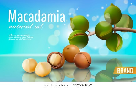 Realistic 3d macadamia nut oil cosmetic shell ad template. Branch leaves nutshell. Light summer sky sunny beauty care. Promotional detailed poster template reflection defocused vector illustration
