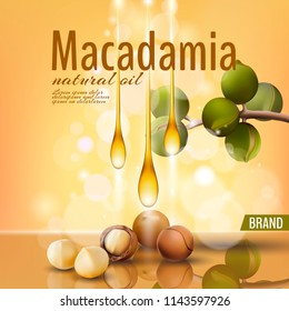 Realistic 3d macadamia nut oil cosmetic shell ad template. Branch leaves nutshell. Light golden sunny beauty care. Promotional detailed poster template reflection defocused vector illustration