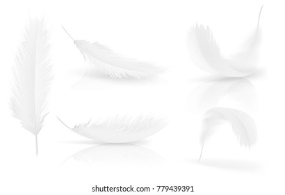 Realistic 3d white bird feathers set. Symbol of lightness, innocence, hope and heaven. Various shapes of Angel or bird detailed feathers. Vector isolated illustration on a white background.