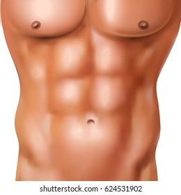 Realistic abs pack of naked man with athletic shaped body on white background vector illustration