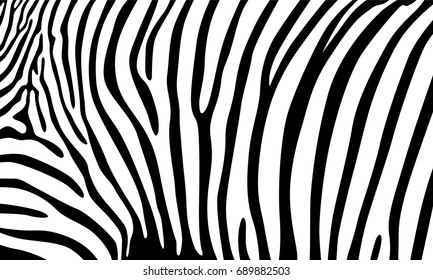 Realistic abstract zebra skin pattern vector illustration