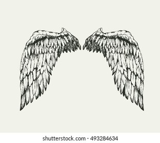 Realistic angel wings. Detailed hand drawn work. Vector illustration