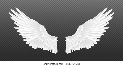 Realistic angel wings. White isolated pair of falcon wings, 3D bird wings design template. Vector concept white cute feathered wing animal on a transparent background