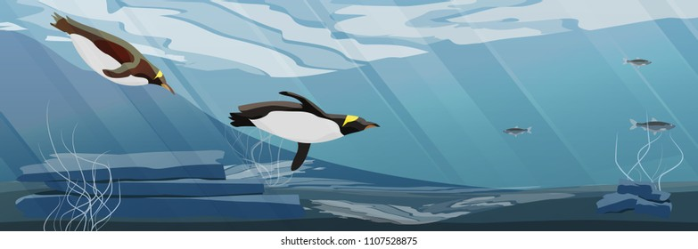 Realistic Antarctic underwater landscape. Two penguins floating in the sea water. Vector illustration, a scene from marine life.