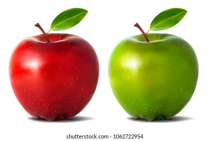 Realistic apples. Vector