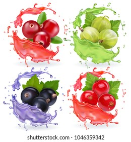 Realistic berries in juices splash set. Gooseberry black currant cranberry and red currant collection