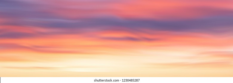 Realistic bright sunset, panoramic image, vector background, EPS10
