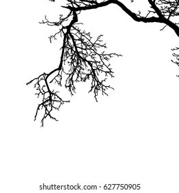 Realistic the broken branch silhouette (Vector illustration).Eps10