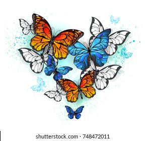 Realistic butterflies blue morpho and orange monarchs on white background.