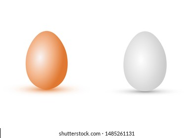Realistic chicken eggs. Vector drawing. Vertical view. Isolated object on a white background. Isolate.