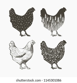 Realistic Chicken logo. Decorative silhouette pattern. Vector illustration in vintage style