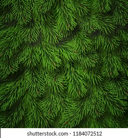Realistic Christmas tree branches background. Detailed Christmas tree branches background. Green needles on branches. Vector Tree branch background.