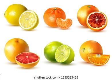 Realistic citrus fruits set with lemon lime orange grapefruit tangerine isolated on white background vector illustration