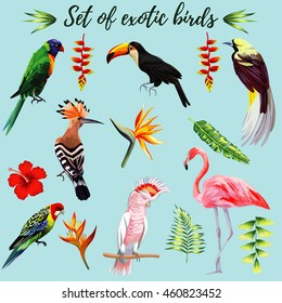 Realistic collection of beautiful exotic tropical birds vector macaw, parrot, pink flamingo, toucan, udot, hoopoe. On a blue background with leaves of palm banana, Strelitzia, hibiscus flower.