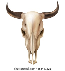 Realistic cow skull with stains and black shiny horns on white background isolated vector illustration