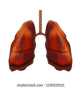 Realistic Detailed 3d Human Lungs and Trachea Internal Organ Healthy Unhealthy View. Vector illustration of Respiratory and Bronchi