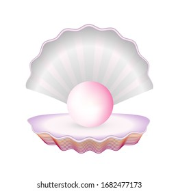 Realistic Detailed 3d Natural Open Shell with Pearl. Mother of pearl shining in open shell of freshwater Isolated on White Background Treasure of Sea. Vector illustration of Natural Jewel.