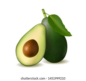 Realistic detailed avocado illustration, isolated on white background with halves and whole avocado. Vector, 3d illustration