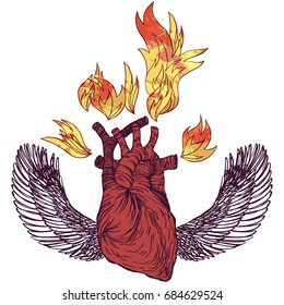 Realistic detailed hand drawn illustration of heart with flames, spread wings, roses. Ink engraving style colorful image. Design element for t-shirt print.