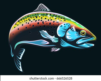 Realistic draw of the rainbow trout jumping out water.Sketch isolated on white background. Concept art for horoscope, tattoo or colour book.