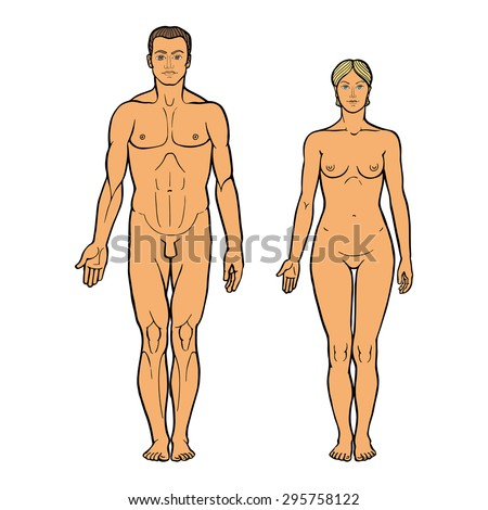 Realistic Drawing Naked Man Woman Standing Stock Vector Royalty