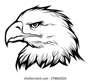 Realistic eagle head. Black and white vector illustration.