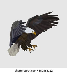 realistic eagle soaring eagle, catching prey, a symbol of freedom, flat design, vector image