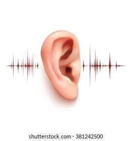 Realistic ear with sound waves isolated on white background. Vector illustration.