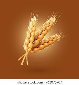Realistic ear of wheat Vector illustration
