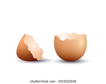 Realistic egg shell, isolated on white background. Vector illustration