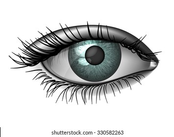 Realistic female eye close up, wide open