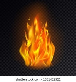 Realistic fire or 3d flame, hot burn on transparent background. Flame emoji or orange heat icon, campfire logo or fireplace element. Concept for ignite and danger, energy and warning, warm and flash